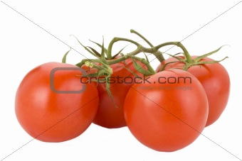 four tomatoes isolated on white background