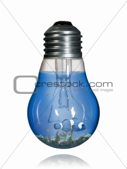 Aquarium bulb