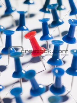One Red Thumbtack Amid Blue Thumbtacks