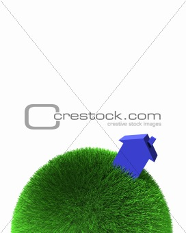 blue house on sphere of grass