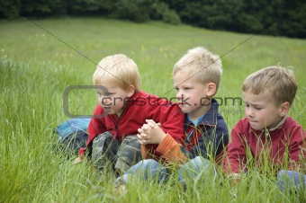 Three Friends in the grass