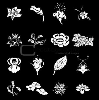 Floral Icon Set Series Design Elements