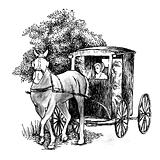 Horse drawn buggy