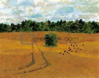 Blackbirds in field