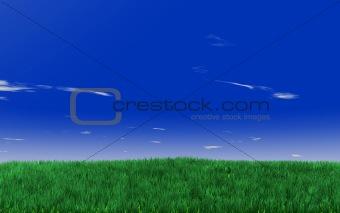 green fields on the blue sky