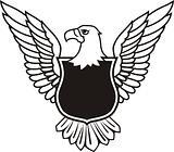 insignia elements