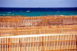 Wooden fence on deserted beach dunes