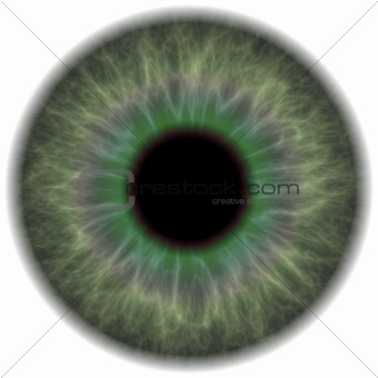 Green Eye Iris