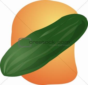 Cucumber illustration