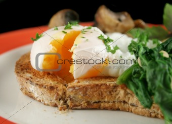 Sliced Poached Egg
