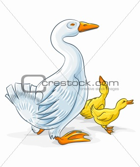 vector goose mother with gosling kids