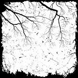 Grunge Background with Branches