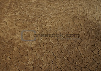 The cracked surface of clay desert in Jordan (oasis Azraq). A texture