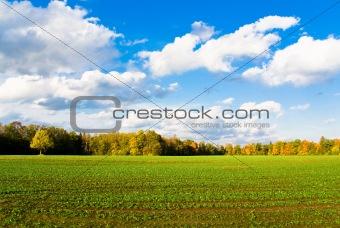 Green field in autumn