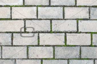 Old paving blocks (stones).