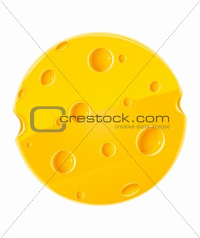 vector piece of cheese isolated food on white
