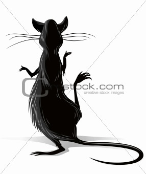 black rat vector illustration