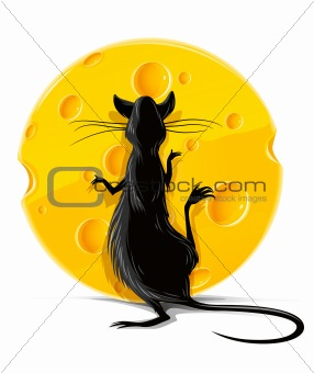 black rat eating yellow cheese vector illustration