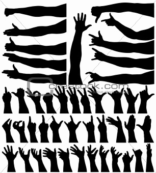 Hands and arms