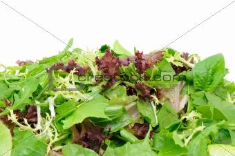 Green salad background