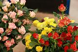 Boquet of roses