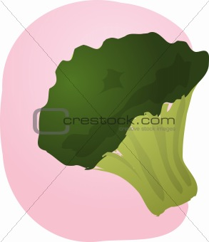 Brocolli illustration