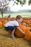 Young boy &amp; pumkins