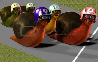 Toon Racing Snails
