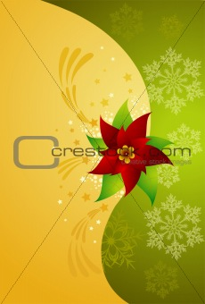 abstract christmas background with poinsettia