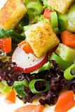 Healthy salad with croutons