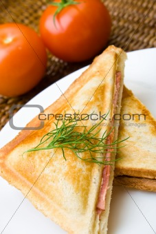 Freshly toasted cheese and ham sandwich