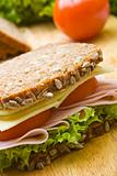 Fresh wholemeal sandwich