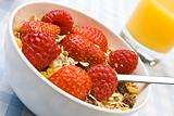 Delicious muesli with fruit