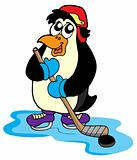 Penguin hockey player