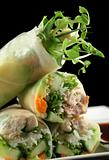 Vietnamese Rice Paper Rolls 3