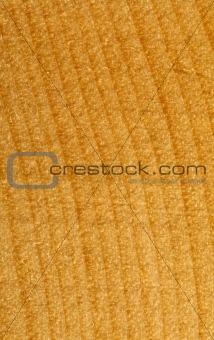 02 closeup of wood texture