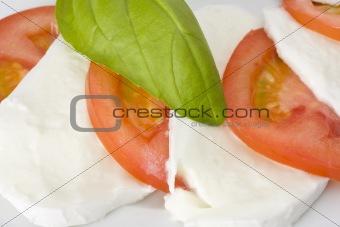 caprese salad: tomato, mozzarella, basil