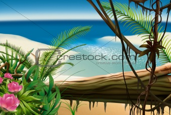 Bay Beach