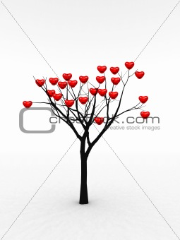 Single Tree With Love 5