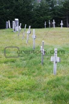 Crosses at a graveyard