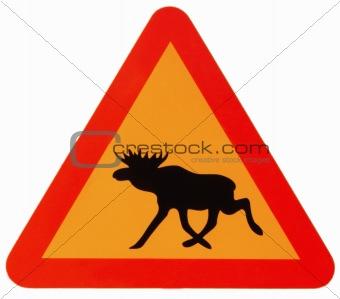 attention elk