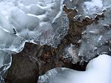 &quot;Winter&quot;: Icy Mountain Creek Formations, Poconos