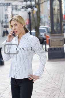 Attractive businesswoman upset on cell phone