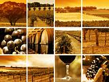 Wine Montage