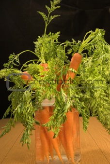 Beauty of carrots