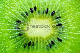 kiwi slice wallpaper