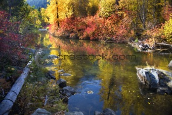 Fall Colors Rocks Wenatchee River Stevens Pass Leavenworth Washi