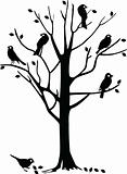 Birds on tree silhouette