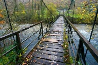 Bridge in the Gurueba