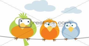 Three Bird on wire